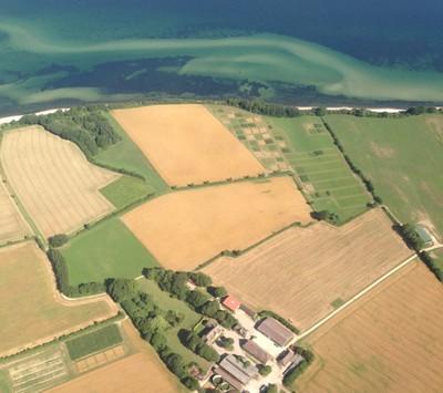lindhof2.jpg