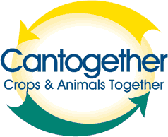 cantogether_logo